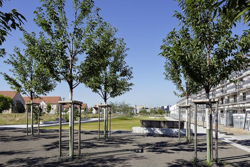 centro verde grünzug auf dem gelände der ehemaligen ludwig frank kaserne in mannheim   freiraumgestaltung: stefan helleckes landschaftsarchitektur stephanienstraße 15 76133 karlsruhe